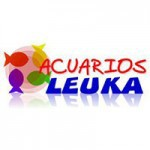 Leuka – acuarios y estanques de jardín y terraza